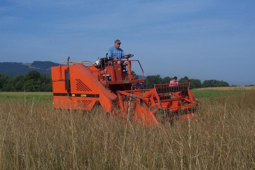 Sklizeň energetických trav v poslední dekádě července 2012