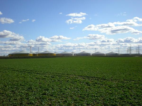 Největší BPS na světě se rozkládá na ploše 20 hektarů