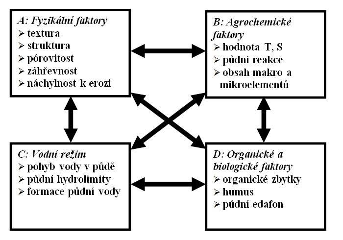Prvky půdní úrodnosti (Wohlrabe, 1963)