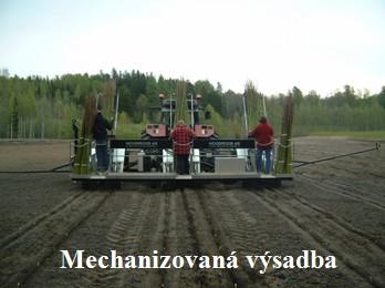 Mechanizovaná výsadba