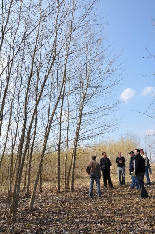 Exkurze na plantáže RRD v Bystřici n.P.