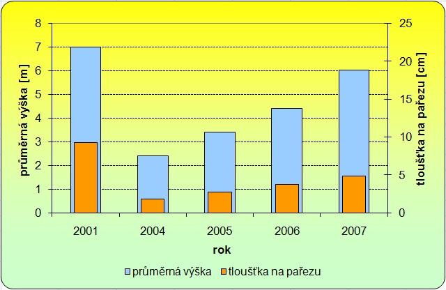 Vývoj plantáže topolu osiky ve Stachách