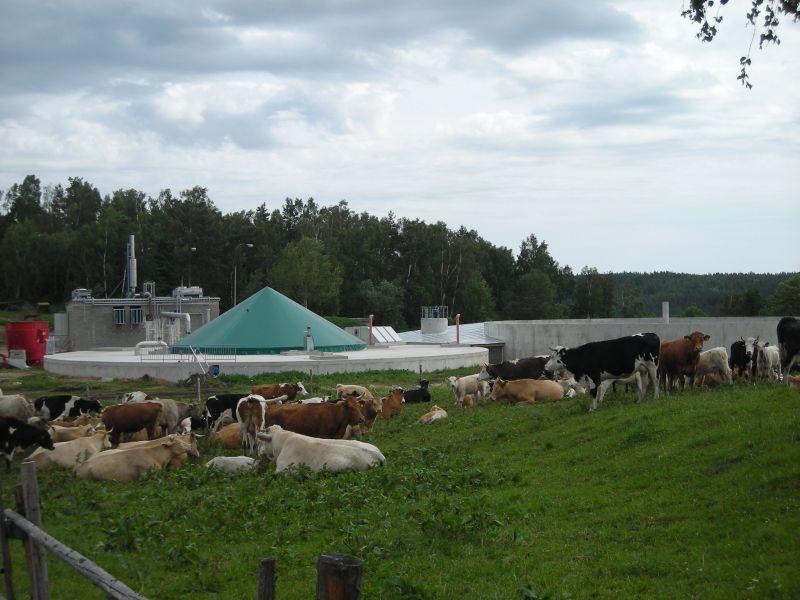 Pohled na bioplynovou stanici Chroboly