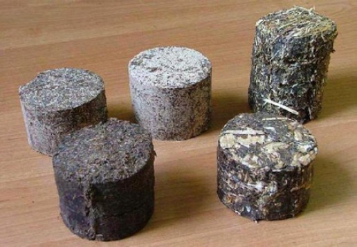 Různé brikety nalisované ze separátu a biomasy rostlin , vzadu z leva do prava separát a dřevěné piliny 1:1, separát a dřevěné piliny 3:7, separát a seno 1:1, vpředu zleva čistý separát a separát s topolovou štěpkou 1:1