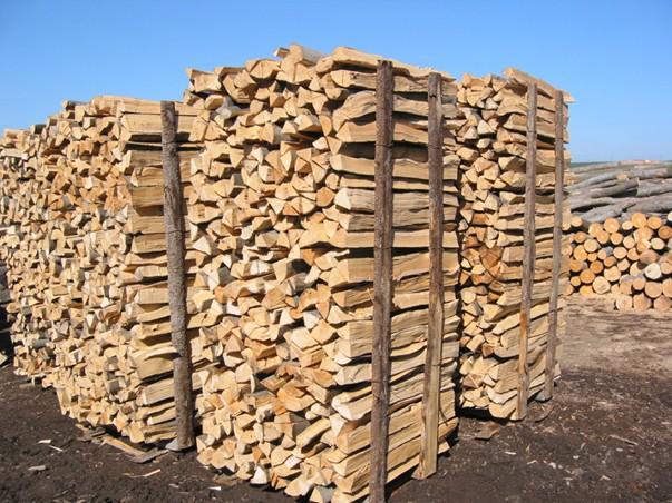 Kvalita palivového dřeva je charakterizována přesnými parametry