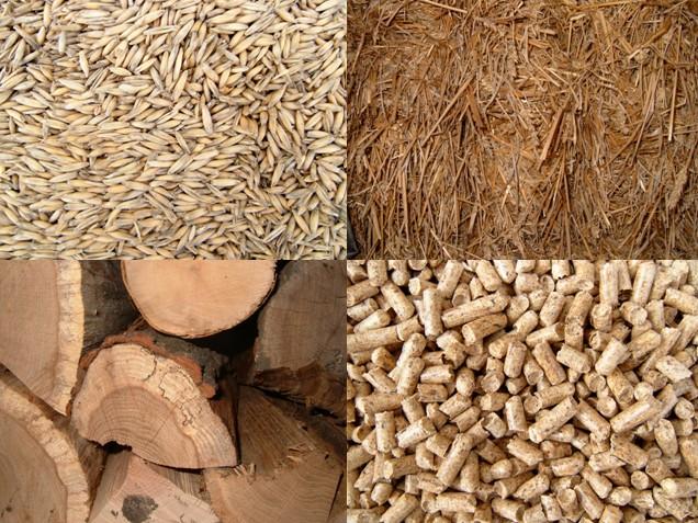 Analyzují se jak původní suroviny, tak finální výrobky: například obilí, sláma, pelety, kusové dřevo a podobně