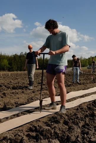 Zakládání plantáží jaro 2008