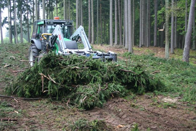 Významnám zdrojom lignocelulózovej biomasy je lesná štiepka