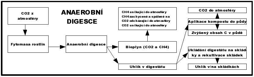 Toky uhlíku při anaerobní digesci biologicky rozložitelných odpadů (Smith et al. 2001)