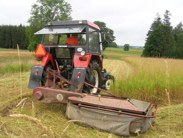 Sklizeň žacím strojem ŽTR 165 v kombinaci s traktorem Zetor 5211