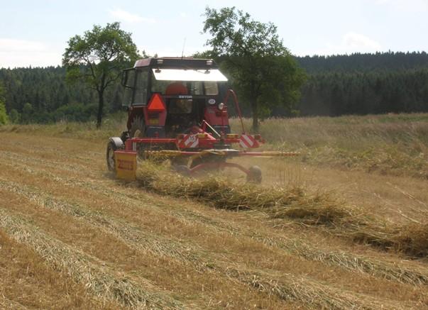 Shrnování řádků shrnovačem Rozmital SB – 3621 v soupravě s traktorem Zetor 5211