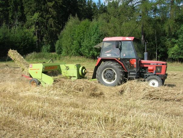 Lisování chrastice rákosovité do malých hranolových balíků lisem Claas Markant 50 v soupravě s traktorem Zetor 5211