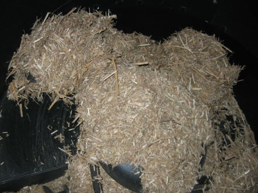 Miscanthus ve formě řezanky v zásobníku
