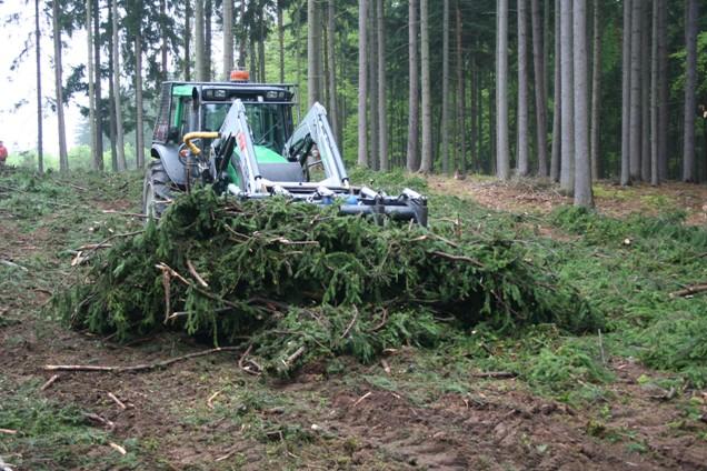 Nedílnou součástí energetického potenciálu biomasy je lesní dendromasa
