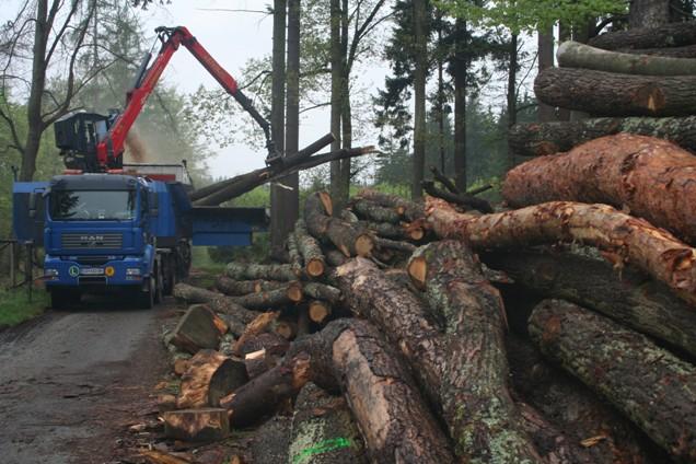 Vývoz biomasy do Německa může významně ovlivnit tuzemský trh