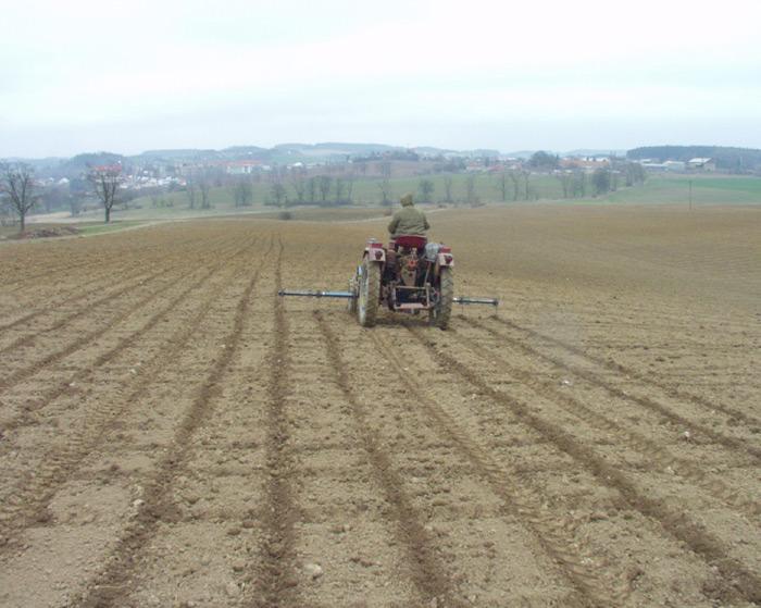 Markérování pozemku pro výsadbu rychle rostoucích dřevin