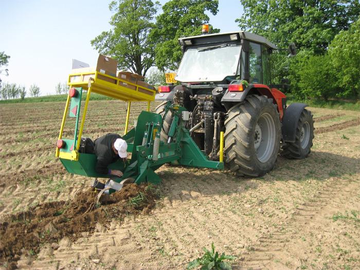 Poloautomatická výsadba rychle rostoucích dřevin