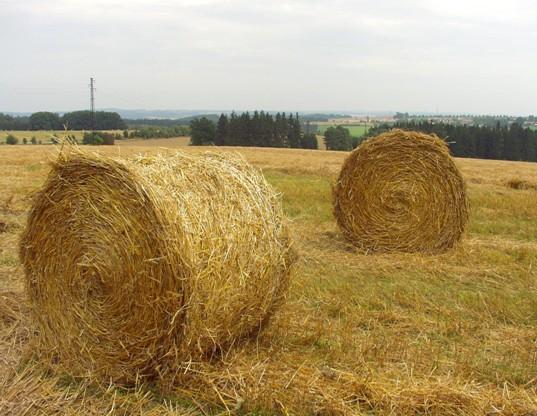 Sláma ze zemědělské produkce